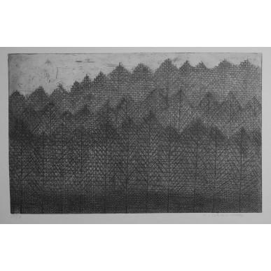obrázek Marie Blabolilová - Modřínový les