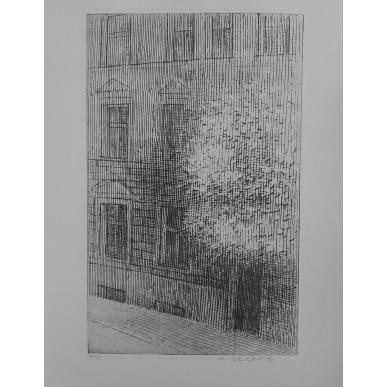 obrázek Marie Blabolilová - Ulice