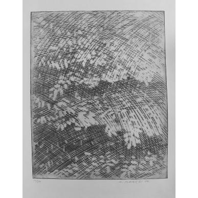 obrázek Marie Blabolilová - Větve 5