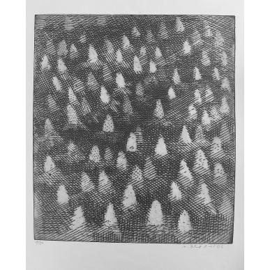 obrázek Marie Blabolilová - Rozkvetlý kaštan