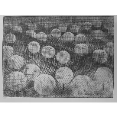 obrázek Marie Blabolilová - Čtyři zahrady