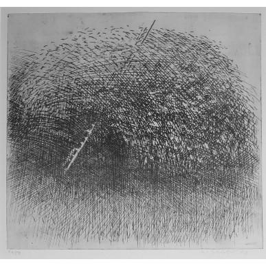 obrázek Marie Blabolilová - Stará třešeň