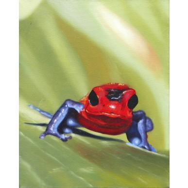 obrázek Petra Vichrová - Žába II