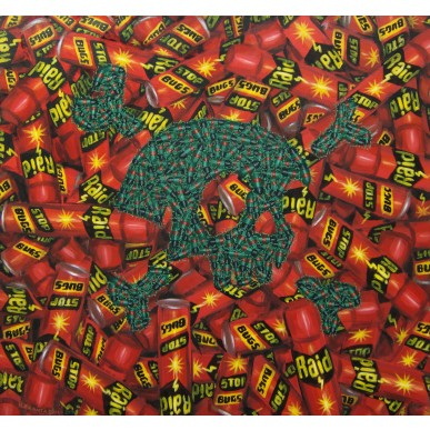 obrázek Roman Franta - Raid, Stop bugs, Konec Beatles