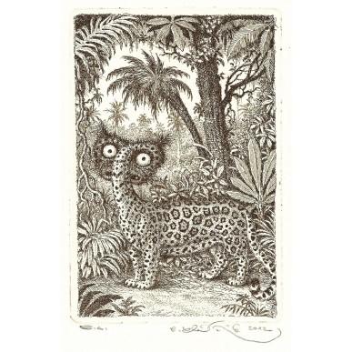 obrázek Peter Klučík - Tiger