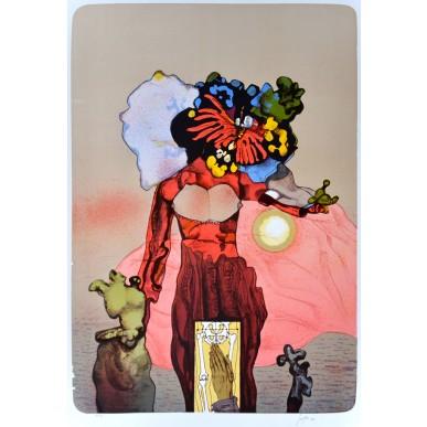 picture Josef Liesler - Motýlková rozkvetlá při západu Slunce